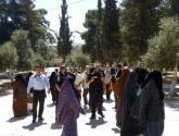 شرطة الاحتلال تقرر وقف اقتحامات المستوطنين للأقصى حتى عيد الفطر