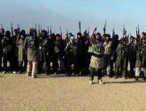 """المرصد السوري: مقتل 100 من """"داعش"""" في عين العرب"""