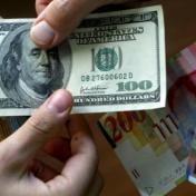 استقرار على أسعار العملات