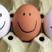 شركة فنزويلية تحفز موظفيها بـ144 بيضة