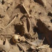 المكسيك.. علماء آثار يعثرون على هيكل عظمي عمره 7 آلاف عام