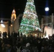 إضاءة شجرة الميلاد في أريحا