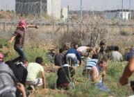 12 إصابة في مواجهات غزة اليوم
