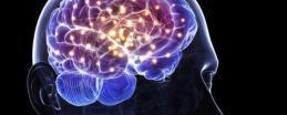 دراسة: الإنسان يتناسى سلوكه اللاأخلاقي انتقائيا