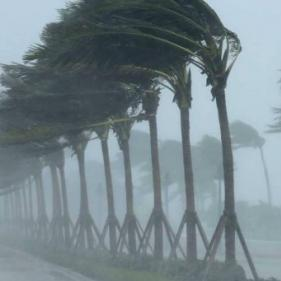 """ولايات أميركية تعلن الطوارئ استعداداً لـ""""ألبرتو"""""""