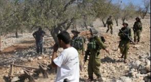 الخليل: قوات الاحتلال تعتقل فتيين شرق يطا