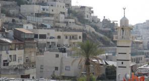 صور.. سلوان صامدة في وجه الاحتلال والاستيطان