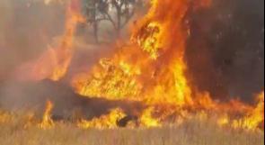 منذ الصباح.. 11 حريقاً في مستوطنات غلاف غزة بفعل الطائرات الورقية الحارقة