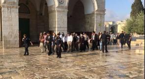 52 مستوطنًا يقتحمون المسجد الأقصى