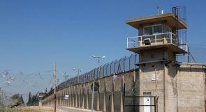 نقل منفذ عملية الطعن في سجن نفحة لجهة مجهولة
