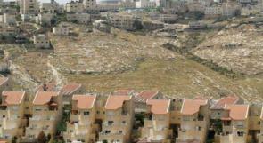 باحث فلسطيني: العدوان على غزة يسهم بخفض النشاط الاستيطاني في الضفة