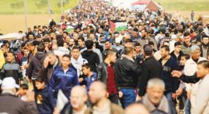 حنون على أسلاك غزة