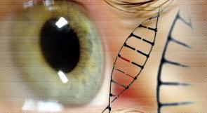 اجراء تجارب جينية على البشر لعلاج العمى الوراثي