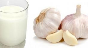ما فوائد تناول خليط الثوم مع الحليب ؟