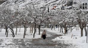 الثلوج تقتل 75 باكستانيا