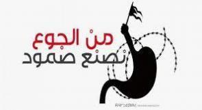الجامعة العربية تحذر من تجاهل الاحتلال المتعمد لوضع الأسرى المضربين