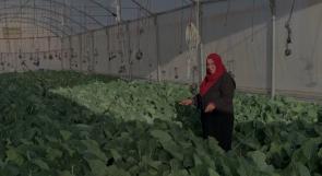 بعد أن فقد زوجها عمله نتيجة الجائحة.. عائشة تنقذ عائلتها بالزراعة