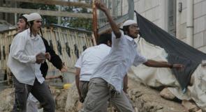 مستوطنون يعتدون على مزارعين جنوب الخليل