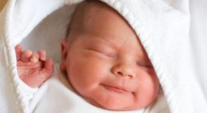 نحو 83 ألف مولود فلسطيني في 2012