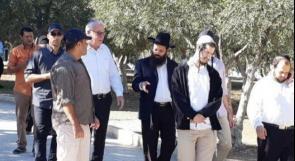 وزير الزراعة الاسرائيلي يقود اقتحامات الأقصى