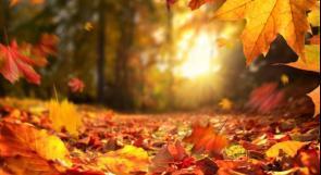 طقس اليوم: الحرارة تبقى حول معدلاتها السنوية دون تغير