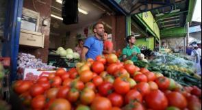 ائتلاف المنظمات الأهلية العاملة في القطاع الزراعي: يجب الوقوف الى جانب المزارع بالقول والفعل