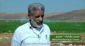 التراب المسموم .. فيلم يظهر مخاطر المبيدات الزراعة المستخدمة في الاراضي الفلسطينية