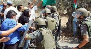 اعتقال شاب واحتجاز أسرته في أرضهم الزراعية ببلدة الخضر