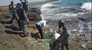 بعد  أربعة أيام من البحث.. العثور على جثة الفنان أيمن صفية جنوب مدينة حيفا