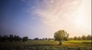 الطقس: اجواء ربيعية حتى نهاية الاسبوع