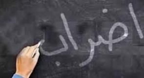 الإضراب من النهر إلى البحر.. هل يساهم في إعلاء الصوت الرافض لجرائم الاحتلال عربيا وعالميا؟