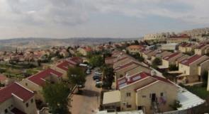 الاحتلال يوسع بؤرة استيطانية على أراضي المواطنين غرب يعبد