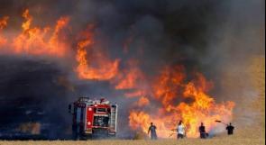 ارتفاع وتيرة اطلاق البالونات الحارقة من غزة على مستوطنات غلاف غزة