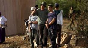 مستوطنون يهاجمون خان اللبن جنوب نابلس