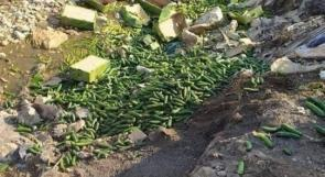 كساد الخضراوات: الأزمة حاضرة والحلول غائبة