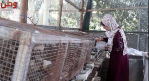 بيسان كتانة.. مربية طيور تدير مشروعا رياديا من مقاعد الدراسة