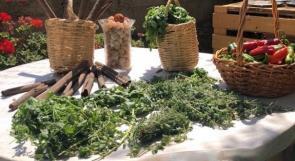 بازار الحاكورة.. منتجات طبيعية وصحية بأيدي فلسطينية