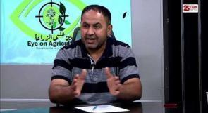 """خلال برنامج """" عين على الزراعة """"  ... مختصون : مواجهة سياسات """"الضم الاستعمارية """" في الاغوار بحاجة لسياسات واستراتيجيات تعزز صمود الانسان على أرضه"""