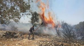 حريقان في اراض زراعية جنوبي جنين