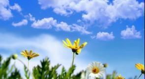 انخفاض على درجات الحرارة واجواء معتدلة حتى نهاية الاسبوع