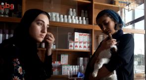 فريق نسائي لحماية الحيوانات الأليفة في غزة