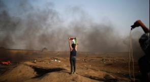 الحقيقة بشأن غزّة