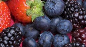 قاوِم الشيخوخة بالفروالة والعنب البري