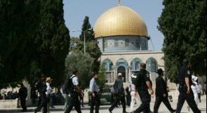 جنود الاحتلال ومستوطنون يقتحمون ساحات المسجد الأقصى