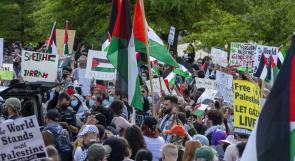 500 أكاديمي عالمي يوقعون رسالة احتجاج ضد الخلط بين معارضة الاحتلال ومعاداة السامية