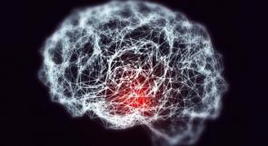 دراسة: الابتعاد عن هذه العادات يقلل خطر الإصابة بألزهايمر