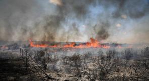 """""""مستوطنات غلاف غزة"""" تحترق بفعل الطائرات الورقية الحارقة تساندها درجة الحرارة المرتفعة"""
