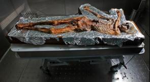 علماء يكتشفون أقدم عينة دم في العالم، عمرها 5300 سنة