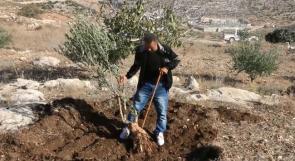 مزارعو بيت أولا لوطن: نطالب المسؤولين بحمايتنا من اعتداءات الاحتلال