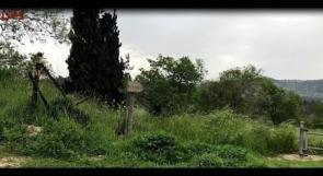 هكذا أصبحت قرية صوبا المهجرة بعد 70 عاما من النكبة!